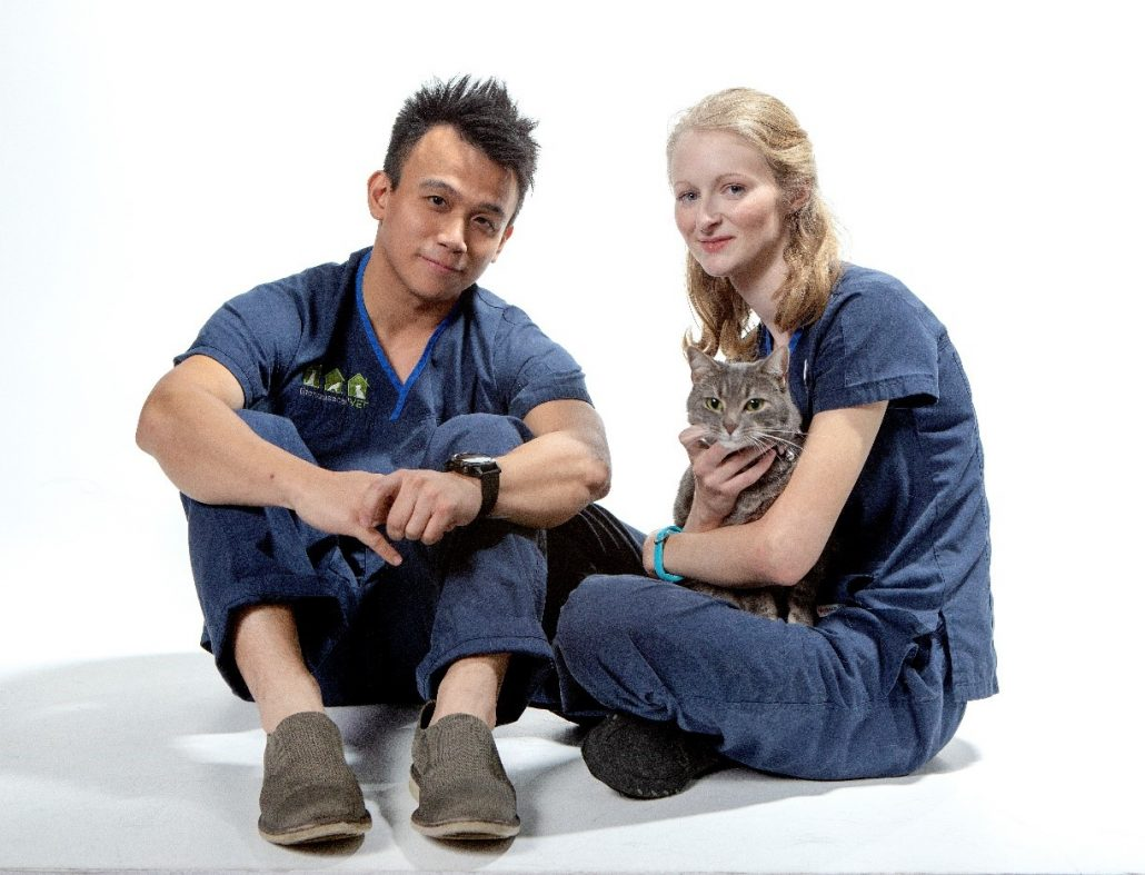 emergency vet - THCV staff and cats