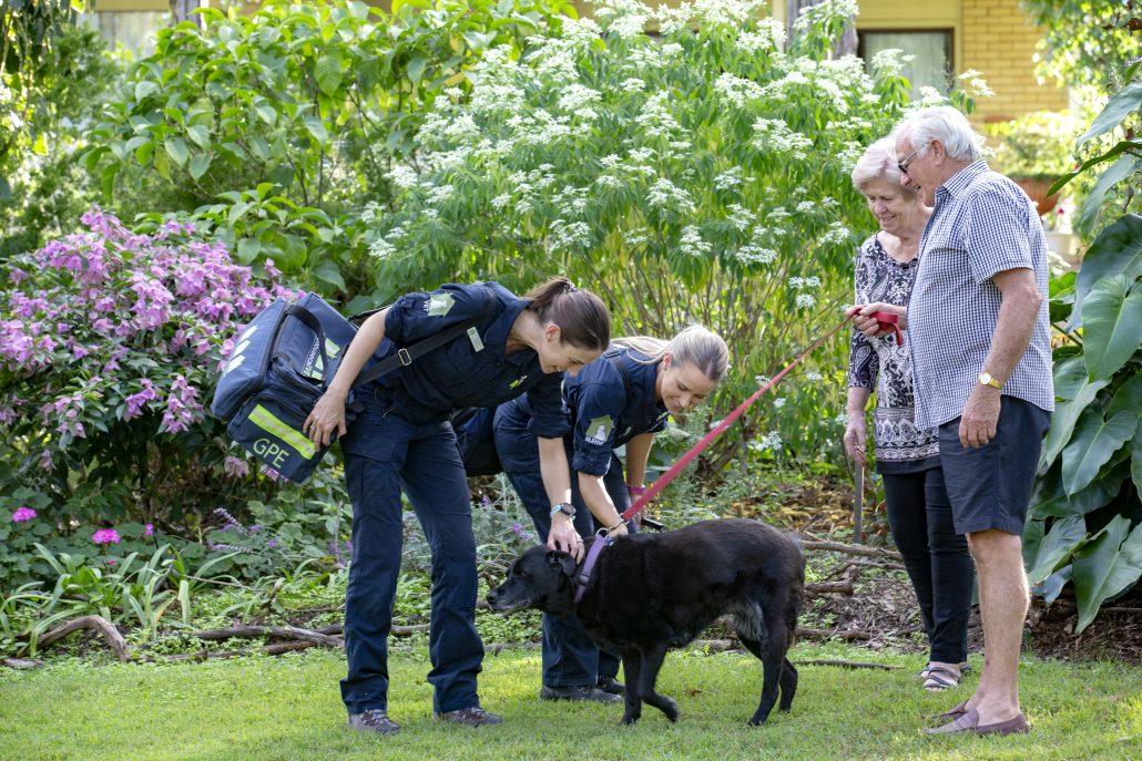 secrets to a stress free vet visit - vet and dog on grass