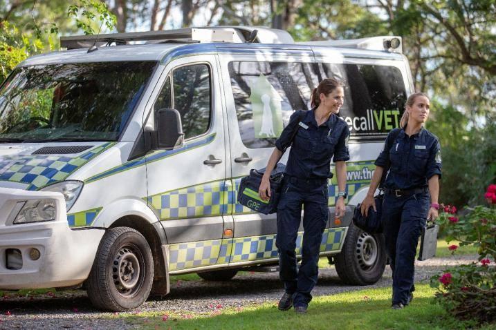 mobile vet clinic - THCV vehicle