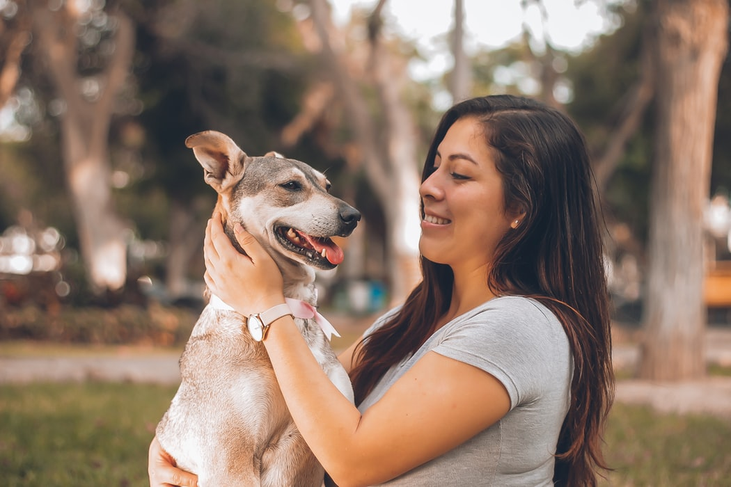 Keep Your Dog Healthy - owner and happy dog